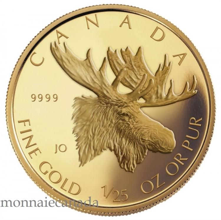 2004 - 25 Cents Proof 1/25oz Gold 'Moose' .9999 Fine NO TAX