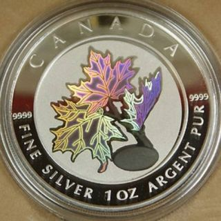 2003 - $5 - Good Fortune silver Maple Leaf Coin