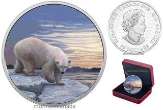 2018 - $30 - 2 oz. Pure Silver Glow-in-the-Dark Coin  Arctic Animals and Northern Lights: Polar Bear