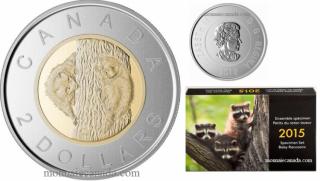 2015 - Special Edition Specimen Set - Baby Raccoons