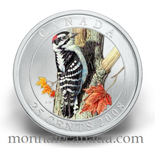 2008 Canada 25 cents  Downy Woodpecker Coloured Coin Bird