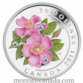 2011 - $20 - Fine Silver Coin - Wild Rose