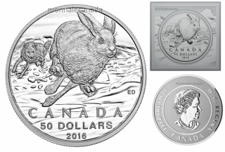 2016 - $50 for $50 Fine Silver Coin - Hare
