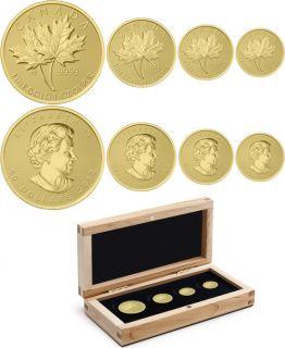 2013 - Pure Gold Fractional Set - Maple Leaf