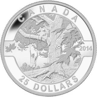 2014 - $25 - 1 oz. Fine Silver Coin - Under the Maple Tree