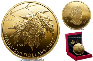 2017 - $500 - 5 oz. Pure Gold Coin - Maple Leaves