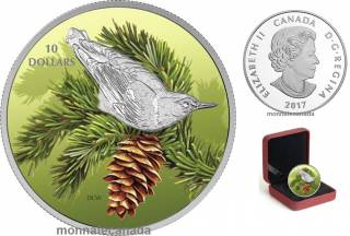 2017 - $10 - 1/2 oz. Pure Silver Coloured - Birds Among Nature's Colours -  Nuthatch