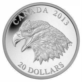 2013 - $20 - 1 oz Fine Silver Coin - The Bald Eagle