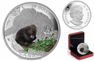 2016 - $20 - 1 oz. Fine Silver Coloured Coin – Baby Animals: Baby Porcupine
