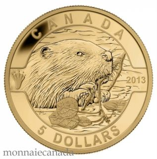 2013 - $5 - 1/10 oz Fine Gold Coin - O Canada series - The beaver