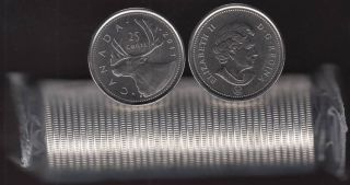 2011 Canada Rouleau 25 Cents Caribou - 40 Pieces - Brilliant Incirculées