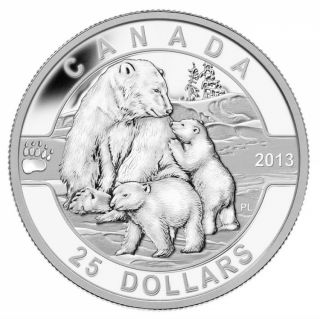 2013 - $25 - 1 oz Fine Silver Coin - The Polar Bear