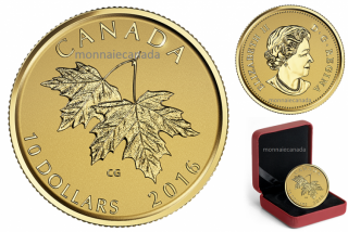 2016 - $10 - Pure Gold Coin – Maple Leaves with Queen Elizabeth II Effigy from 2003