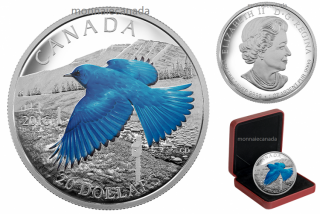 2016 - $20 - 1 oz. Fine Silver Coloured – Migratory Birds Convention Series: The Mountain Bluebird