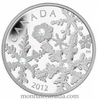 2012 - $20 - Fine Silver Coin - Holiday Snowstorm