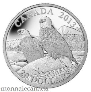 2013 - $20 - 1 oz Fine Silver Coin - The Bald Eagle: Lifelong Mates