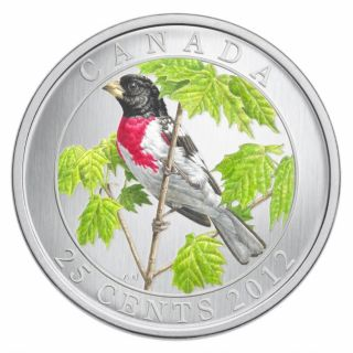 2012 - Rose-breasted Grosbeak - 25-Cent Coloured Coin