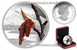 2015 - $20 - 1 oz. Fine Silver Coin – Forests of Canada: Boreal Balsam Poplar