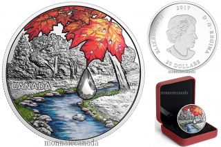 2017 - $20 - Pure Silver Coin with Swarovski® Crystal - Jewel of the Rain: Sugar Maple Leaves