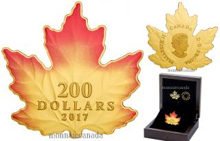 2017 - $200 - 1 oz. Pure Gold Coloured Coin - Autumn Fire