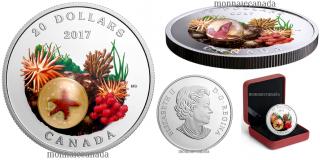 2017 - $20 - 1 oz. Pure Silver Coloured Coin - Under the Sea: Sea Star