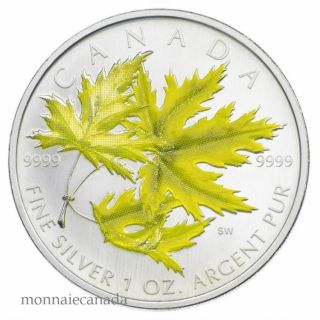 2006 - $5 Silver Maple leaf colored - Silver maple - Tax Exempt