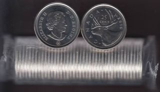 2016 Canada Rouleau 25 Cents Caribou - 40 Pieces - Brilliant Incirculées