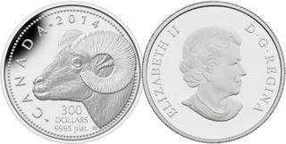 2014 - $300 -1 oz Fine Platinum Coin - Rocky Mountain Bighorn Sheep