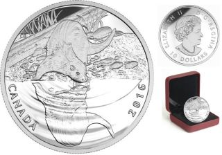 2016 - $10 - Fine Silver - Reflections of Wildlife - Otter