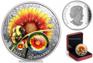 2017 - $20 - 1 oz. Pure Silver Coloured Coin - Mother Nature's Magnification: Beauty Under the Sun