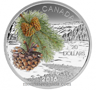 2015 - $20 - 1 oz. Fine Silver Coin – Forests of Canada: Coast Shore Pine