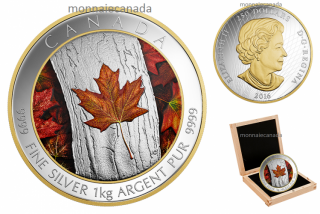 2016 - $250 - One Kilogram Pure Silver Coloured Coin – Maple Leaf Forever