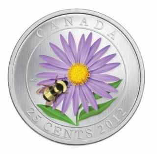 2012 Aster with Bumble Bee - 25-Cent Coloured Coin