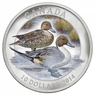 2014 - $10 -  1/2 oz. Fine Silver Coin - Pintail Duck