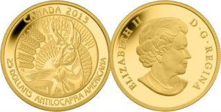 2013 - $25 - Pure Gold Coin - Pronghorn