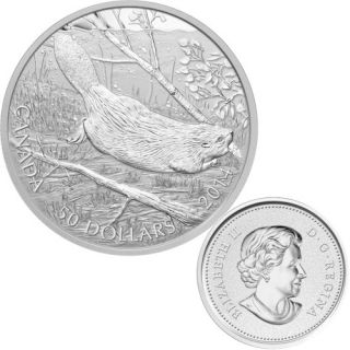2014 - $50 - 5 oz. Fine Silver Coin - Swimming Beaver