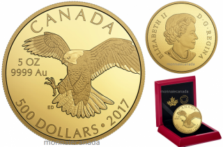 2017 - $500 - 5 oz. Pure Gold Coin – Peregrine Falcon