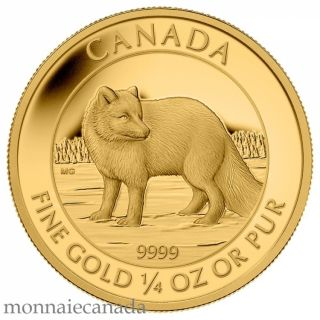 2014 - $10 - Fine Gold Coin - Arctic Fox - RARE