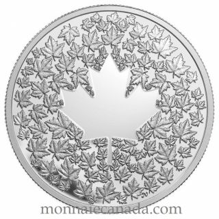 2013  - $3  fine silver coin - Maple leaf impression