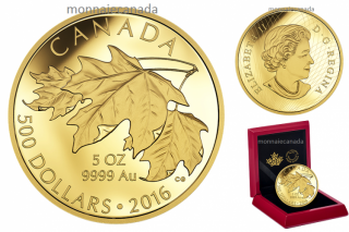 2016 - $500 - 5 oz. Pure Gold Coin – Maple Leaves