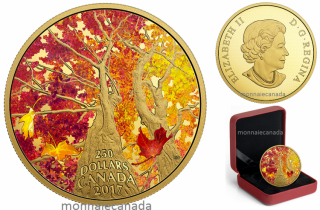 2017 - $250 - 2 oz. Pure Gold Coloured Coin – Maple Canopy: Kaleidoscope of Colour