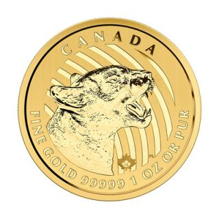2015 - 1 oz Fine Gold .99999 Call of the Wild Series - Growling Cougar Gold Coin * PHONE ONLY *