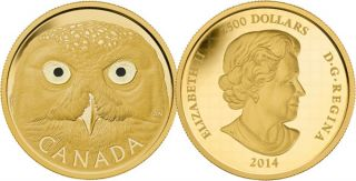 2014 - $2500 - Pure Gold One Kilogram Coin - Snowy Owl