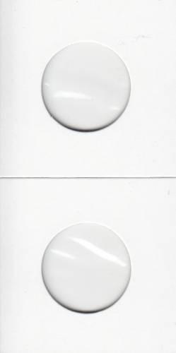 Paquet de 100 Flipettes de carton 2X2 pour les 25 cents