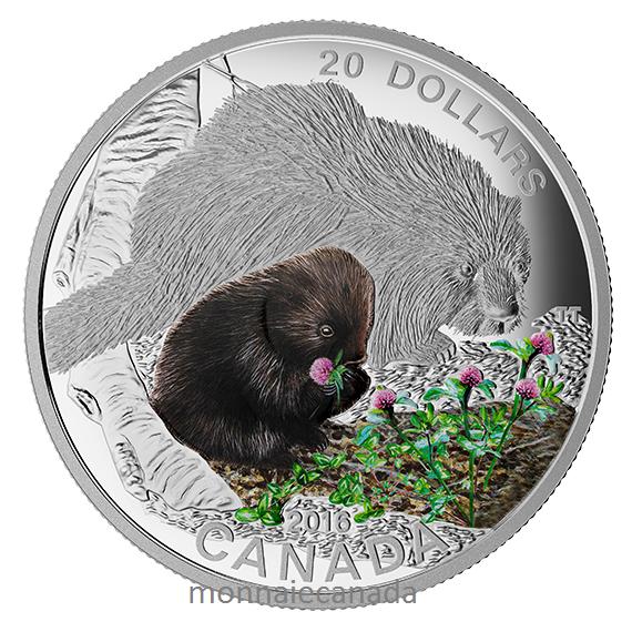 2016 - $20 - 1 oz. Fine Silver Coloured Coin – Baby Animals: Baby Porcupine