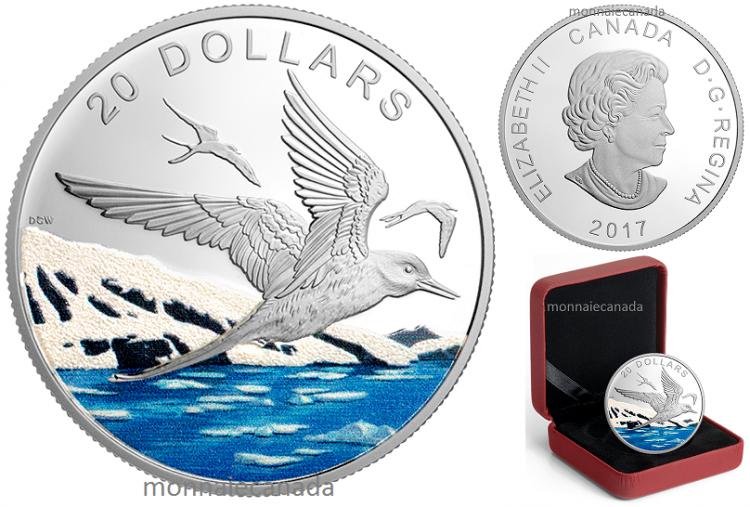 2017 - $20 - Pièce colorée de 1 oz en argent pur – Nord scintillant : La sterne arctique