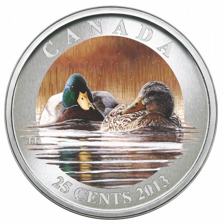 2013 - Pièce colorée - Le canard colvert 25¢
