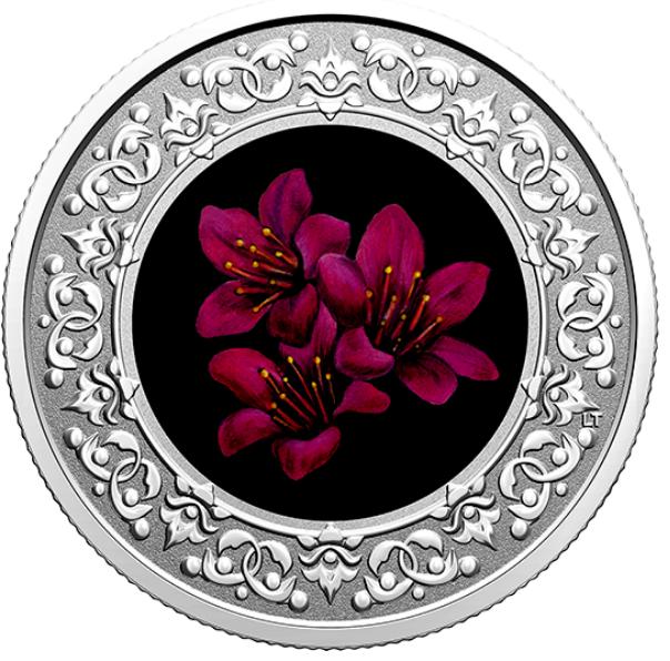2021 - $3 - Pièce colorée en argent pur – Emblèmes floraux du Canada – Nunavut : Saxifrage à feuilles opposées