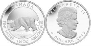 2013 - $8 - 1 oz 1/2 - Pièce en argent fin - Ours polaire