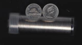 1982 Canada 5 Cents - 40 Coins in Plastic Tube - B.UNC